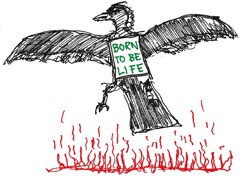 Der Füsse der Parasit das Präparat der Billardstöcke